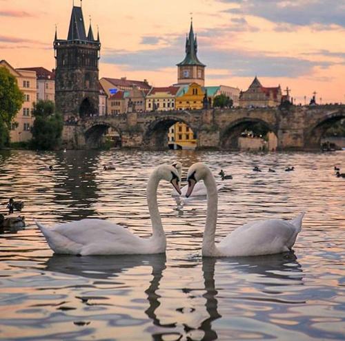 الاماكن الرومانسية في زيورخ