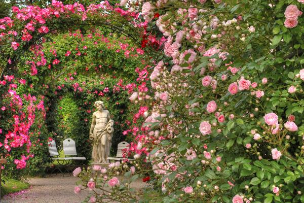 حديقة الزهور في بادن بادن