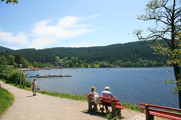 بحيرة تيتسي المانيا الغابة السوداء